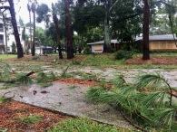 Hurrican Irma 28